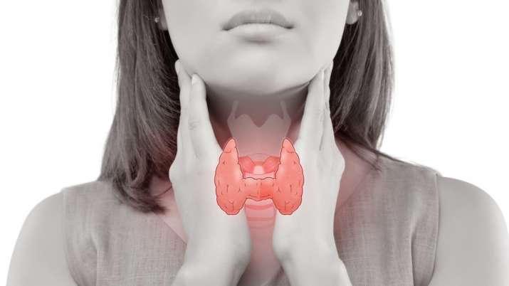 Things to know about the thyroid gland