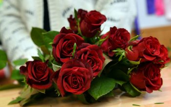 Tips on How to Buy Roses Online